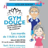 Atelier Gym douce seniors